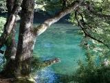 Turkosblåa floder