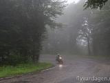 Dimma i Rumänien