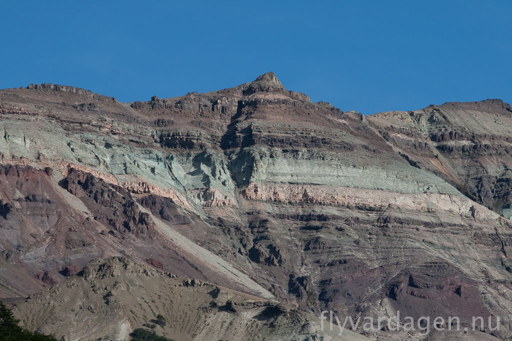 Bergarter