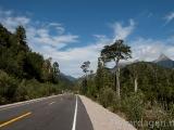 Carretera Austral-asfalt