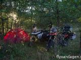 Camping i skogen